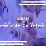 Especialízate En Veterinaria